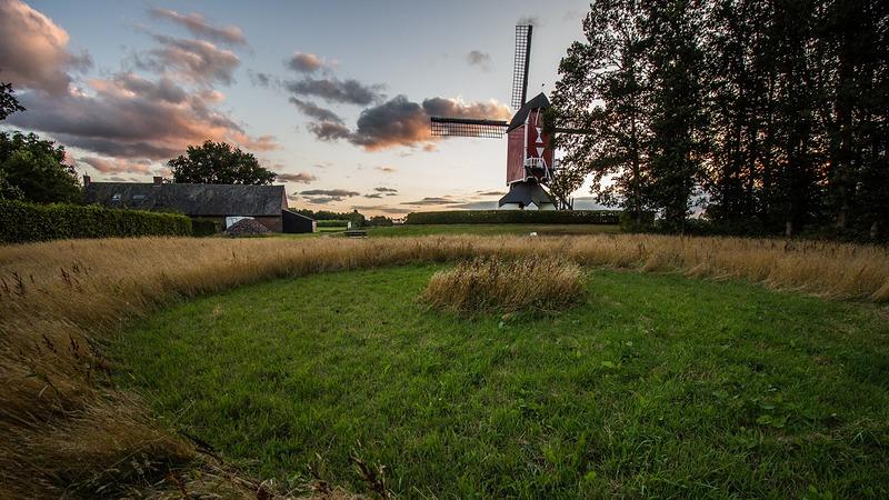 Graancirkels duiken op in Someren bij molen Den Evert