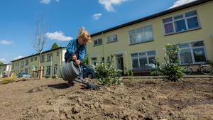 Boomgaard voor de Ravelijn