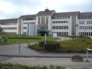 Celstraf voor frauderende PVV'er