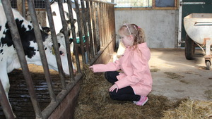1e Paasdag Brunchen tussen de koeien