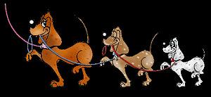Spelregels honden uitlaten