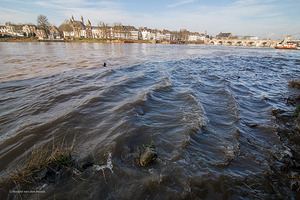 Onderzoek naar voorkoming wateroverlast toekomst