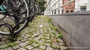 Intensiever onderhoud groen in 2018