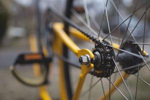 Start Amstel Gold Race nog zeker vijf jaar in Maastricht