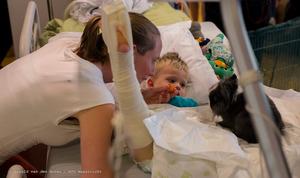 Dieren op de kinderafdeling