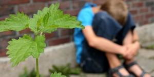 D66 presenteert uitkomst enquête over jeugdhulp